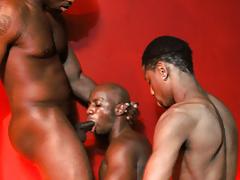 Stallion stripper gives doormen head, during a customer sleeps with him