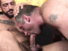 Tom Colt & Christian Volt