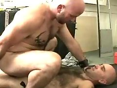 Mature faggot jazzes in doggy style and rides cock