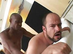 Bear man-lover owned by gangsta male in sofa