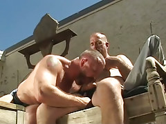 Hairy man-lover sucks knob of old stud