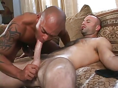 Hairy twink sucked by latin guy on bed