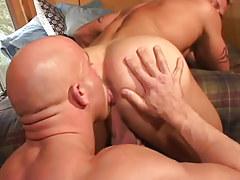 Gay Lick Ass