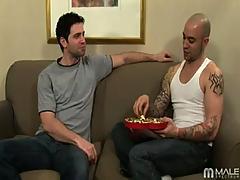 Gay Sex Hose