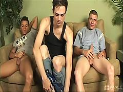 Obtainable Gay Pantyhose